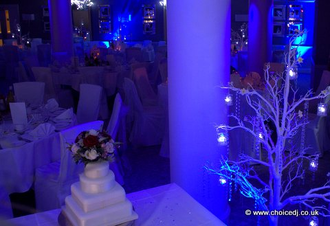 Anna & Arash – Richmond Hill Hotel, Surrey 21/12/2013